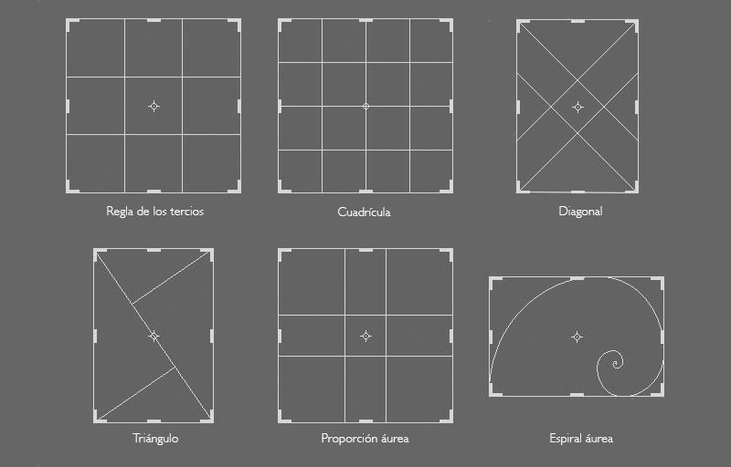 Como mostrar la proporción áurea en Lightroom – MAXSTUDIO cursos de ...